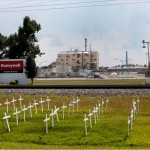 Crosses erected in memory of workers who died of cancer